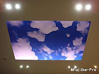 N130124b2